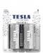 Alkaline batteries TESLA D/LR20/1,5V 2pcs SILVER+